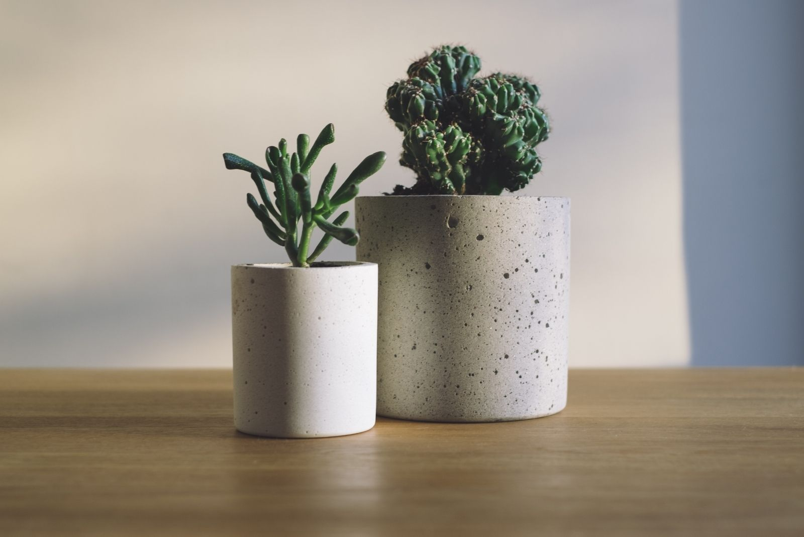 zero-waste-wedding-pots